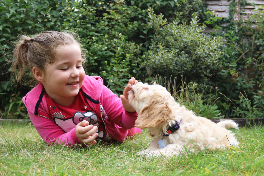 Make-A-Wish Foundation Girl with Puppy
